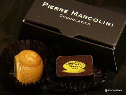 2009/01/18;PIERRE MARCOLINIのショコラ
