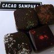 CACAO SAMPAKA:カカオ・サンパカ
